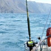 Рыбалка. Остров Дезерта Гранде. Мадейра, 2015