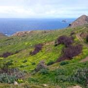 Остров Порту Санту. Мадейра