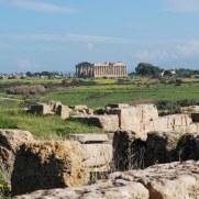 Вид из акрополя на Храм Е. Селинунте, Сицилия. 2010