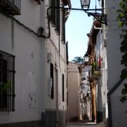Альбайсин. Гранада, 2010