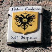 Контрада Орел. Сиена, Италия, 2011