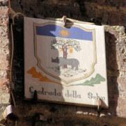 Контрада Дерево. Сиена, Италия, 2011