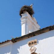 Госпиталь Иисуса из Назарета. Мерида, Испания, 2011