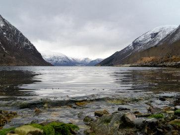Норвегия. Ланефьорд
