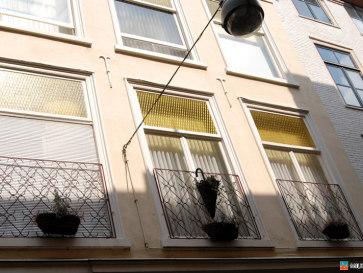 Европа-2008. Гаага. На улицах города
