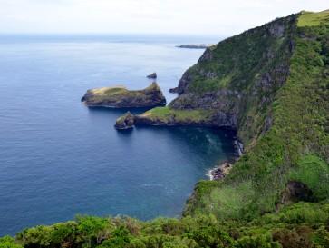Залив Алагуа. Остров Флореш