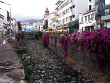 Рибейра Санта Луция. Фуншал. Мадейра