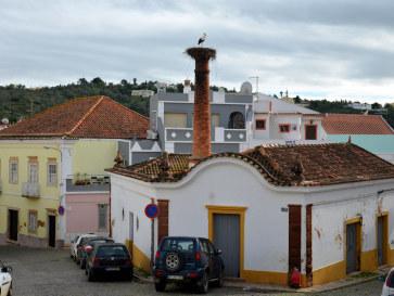 Аист. Силвеш, Алгарве, Португалия, 2015