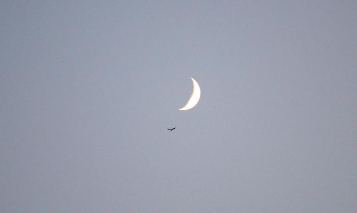 Луна над Стромболи. Липарские острова. Италия. 2015