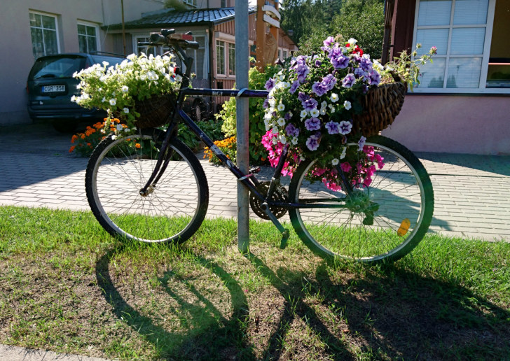 Велосипед - клумба. Юодкранте, Куршская коса, Литва, 2016