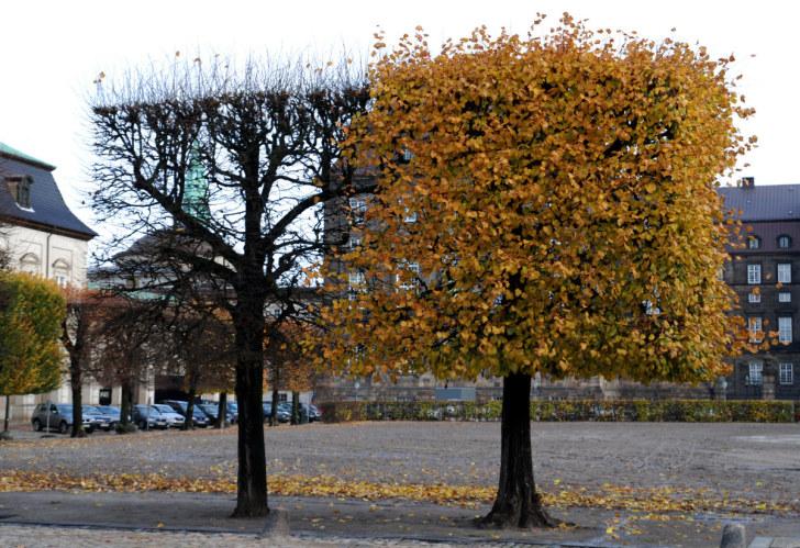 Кристиансборг, Копенгаген, 2010