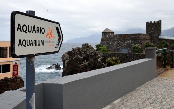 Форт Сан Жуана Батиста. Порту Мониш, Мадейра, 2016
