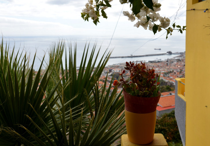 Вид на Фуншал. Мадейра, 2016