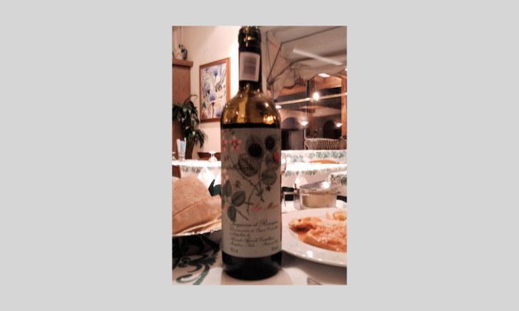 Вино. Ресторан La Gardela. Равенна, 2011
